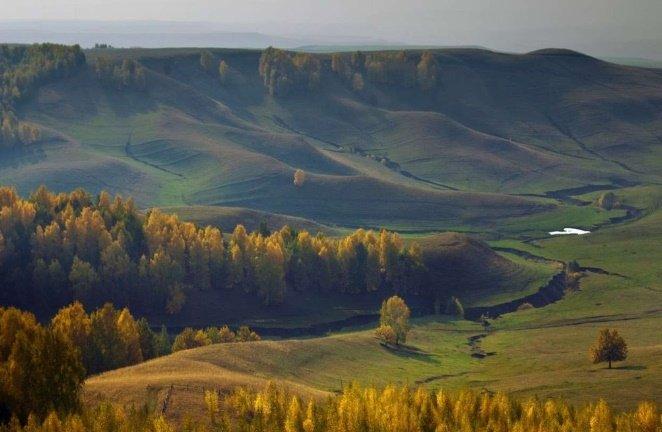 Холмистый рельеф местности